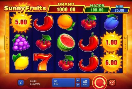 Sunny Fruits Hold and win Slots -Playson